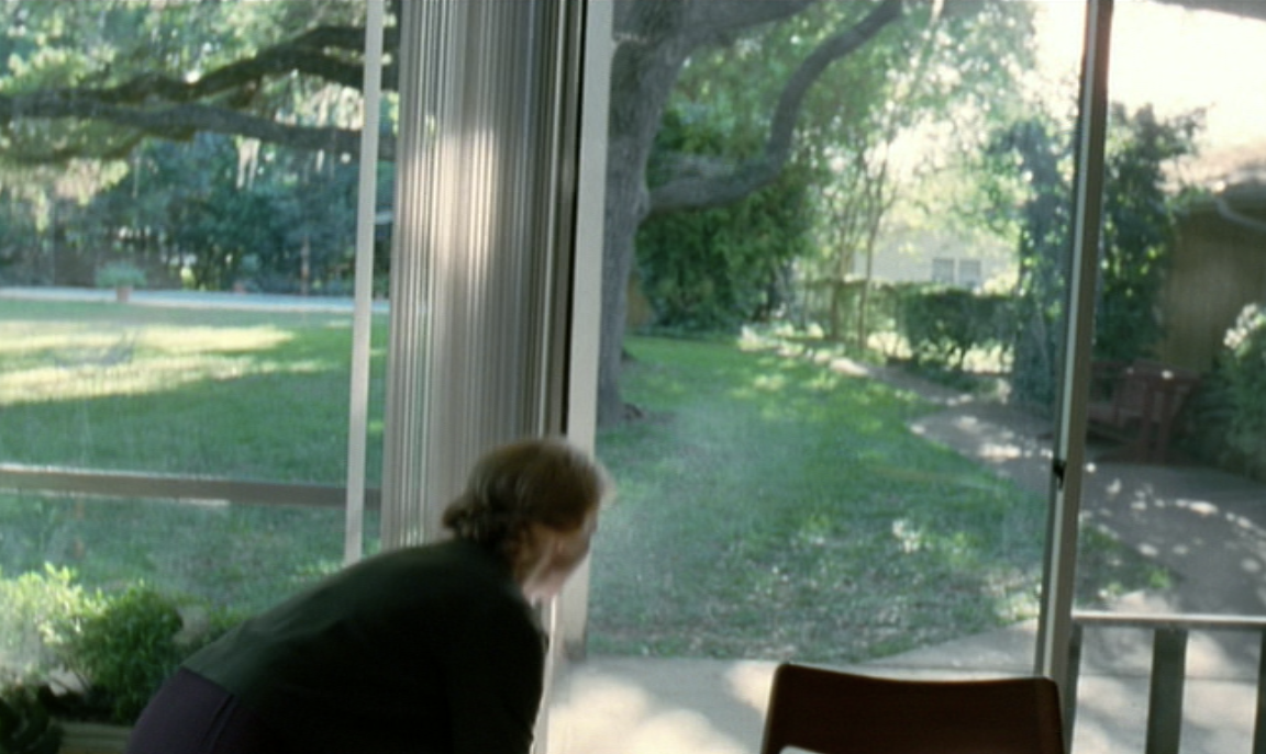 Figure 7, Tree of Life, Malick (2011)